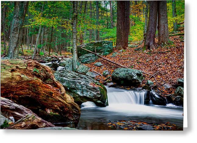 Autumn At The River Greeting Card by David Hahn
