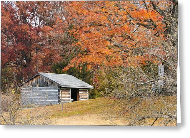 Autumn Behind The Homestead Greeting Card
