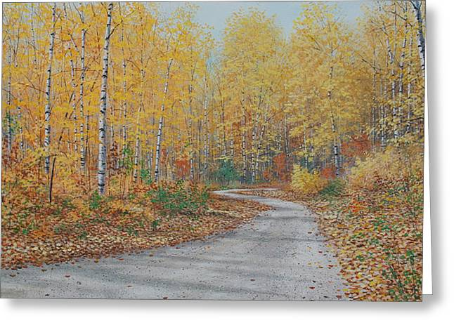 Autumn Birches Greeting Card by Jake Vandenbrink
