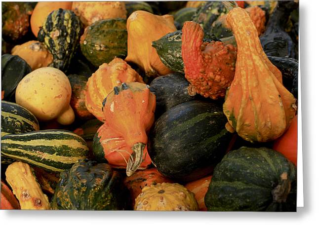 Greeting Card featuring the photograph Autumn Bounty by Patrice Zinck