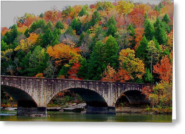 Autumn Bridge 2 Greeting Card