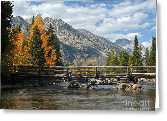 Autumn Bridges Grand Teton National Park Greeting Card