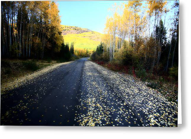Autumn Colors Along Northern British Columbia Road Greeting Card