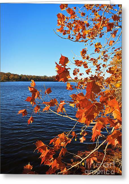 Greeting Card featuring the photograph Autumn Colors by Lawrence Burry