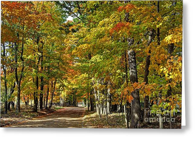 Autumn Colors Greeting Card by Rodney Campbell