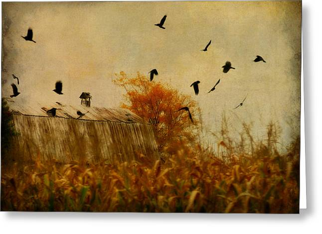 Autumn Cornfield Greeting Card by Gothicrow Images