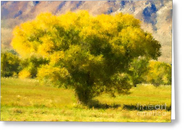 Autumn Cottonwood Greeting Card