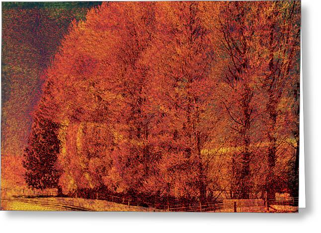 Autumn Days Greeting Card by Linde Townsend