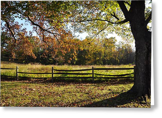 Autumn Field In Pennsylvania Greeting Card by Bill Cannon