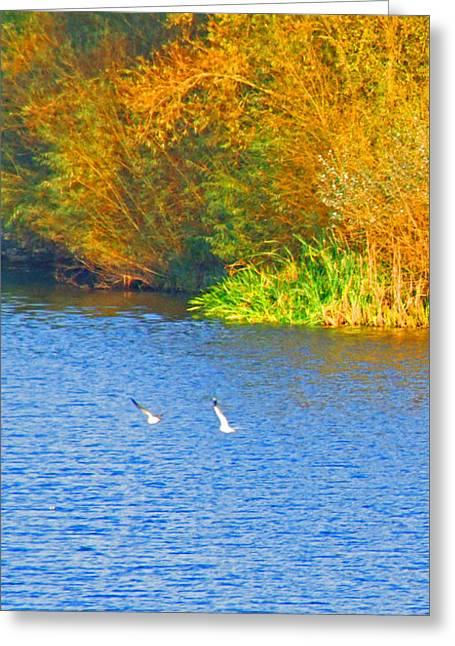 Autumn Flight Greeting Card by Bai Qing Lyon