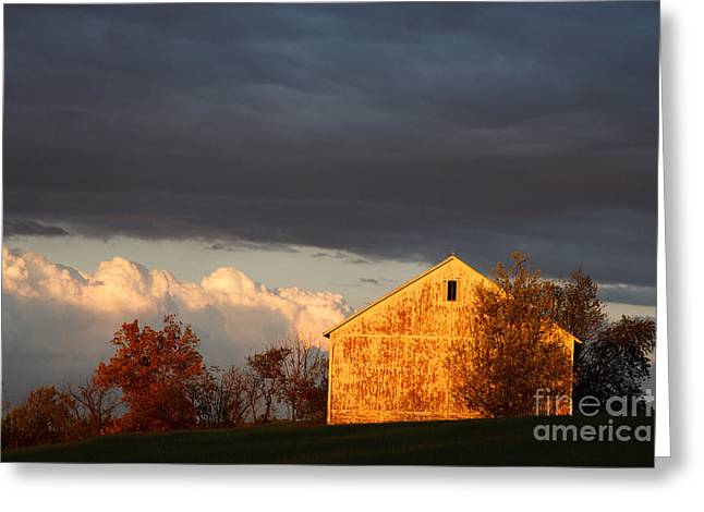 Greeting Card featuring the photograph Autumn Glow With Storm Clouds by Karen Lee Ensley