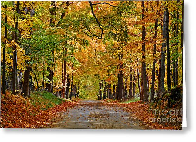 Autumn Gold Greeting Card by Rodney Campbell