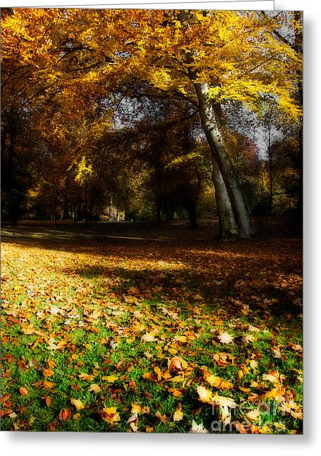 Autumn Greeting Card by Hannes Cmarits