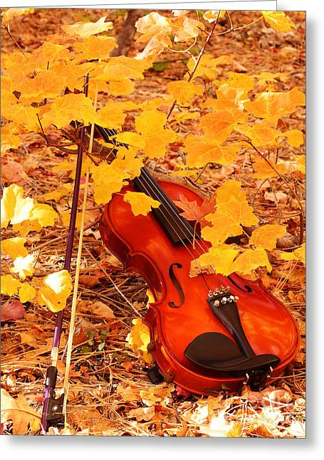 Autumn Harmony Greeting Card by Val Armstrong