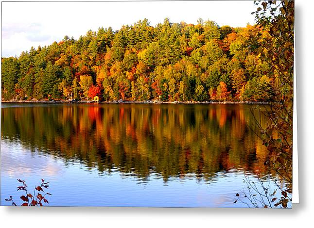 Autumn In Cottage Country Greeting Card