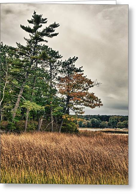 Greeting Card featuring the photograph Autumn In Nh by Edward Myers