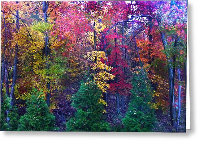 Autumn In Virginia Greeting Card by Nabila Khanam