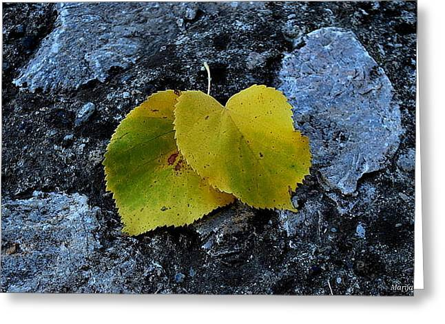 Greeting Card featuring the photograph Autumn Is My Love by Marija Djedovic