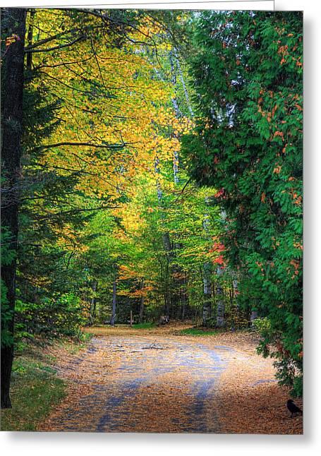 Autumn Greeting Card by Kean Poh Chua