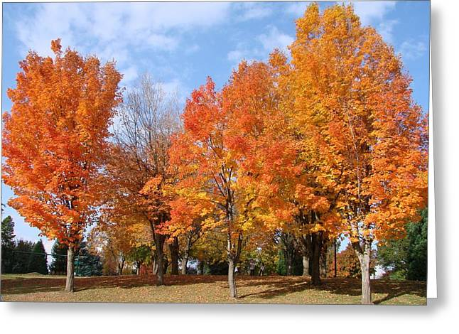 Autumn Leaves Greeting Card by Athena Mckinzie