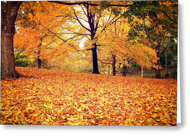 Autumn Leaves - Central Park - New York City Greeting Card by Vivienne Gucwa