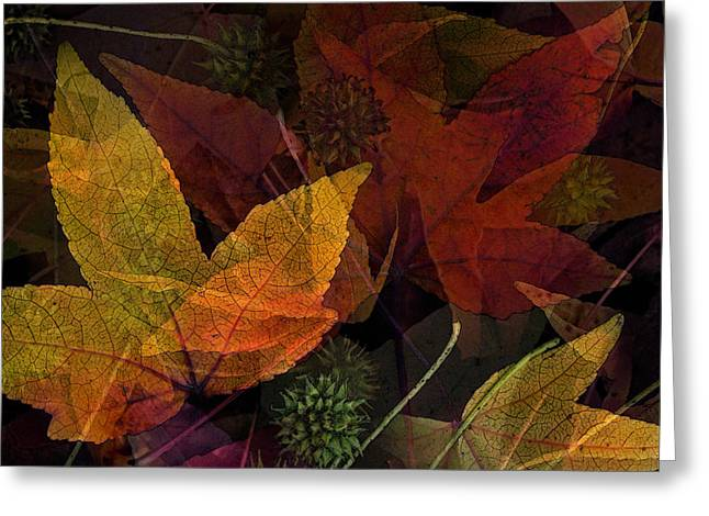 Autumn Leaves Collage Greeting Card by Bonnie Bruno