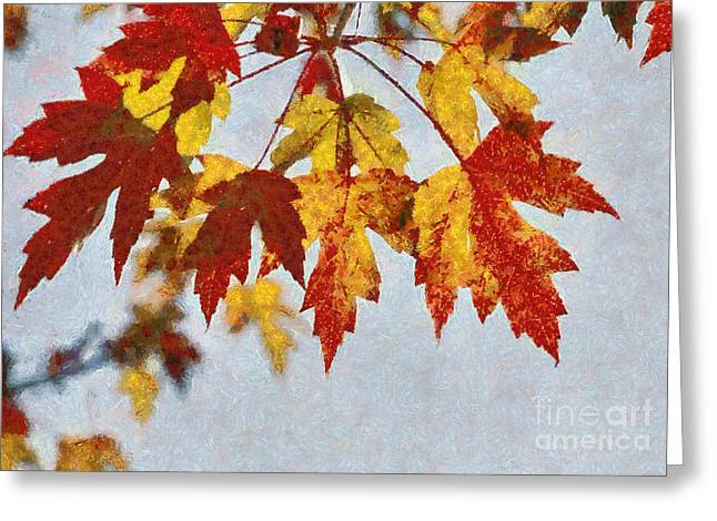 Autumn Leaves IIi Greeting Card by Billie-Jo Miller