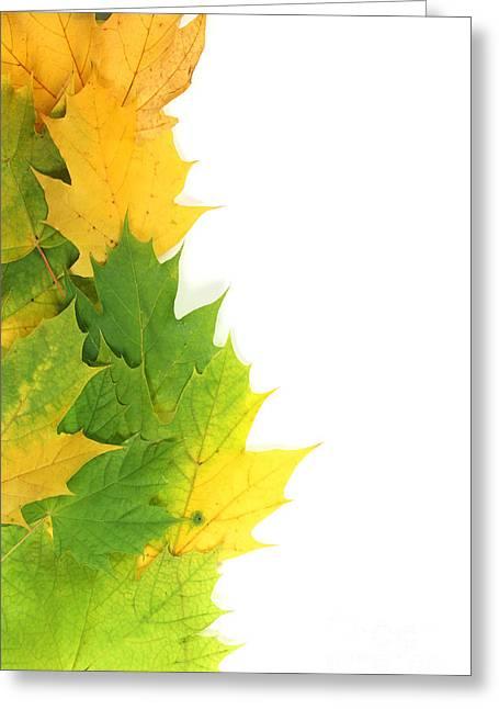 Autumn Leaves On Edge Greeting Card