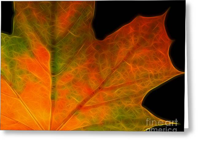 Autumn Maple Leaf Greeting Card by Wingsdomain Art and Photography