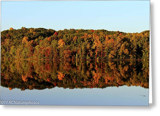 Greeting Card featuring the photograph Autumn Mirror by Rachel Cohen