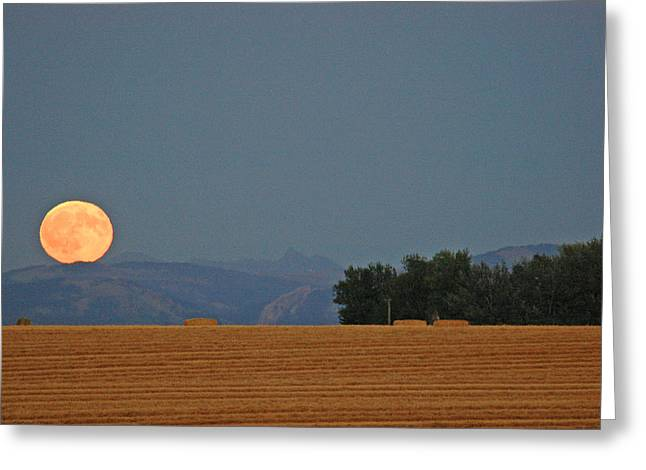 Autumn Moonrise Over Montana's Bridger Mountains Greeting Card by Bruce Gourley