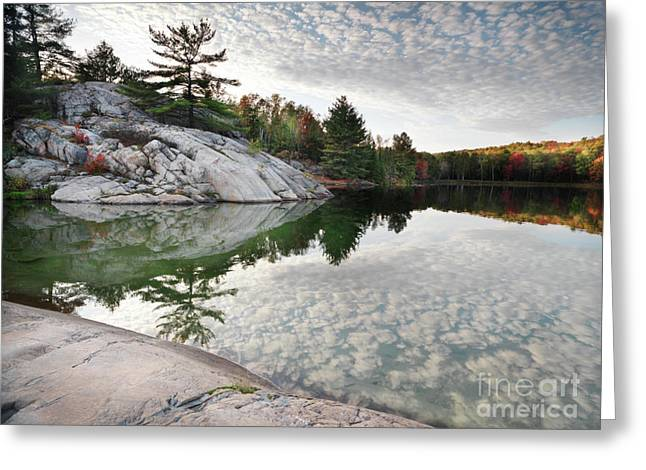 Autumn Nature Lake Rocks And Trees Greeting Card by Oleksiy Maksymenko