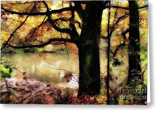 Autumn Oak Tree Greeting Card by Dariusz Gudowicz