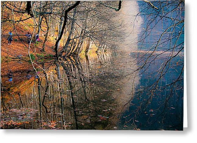 Greeting Card featuring the photograph Autumn by Okan YILMAZ