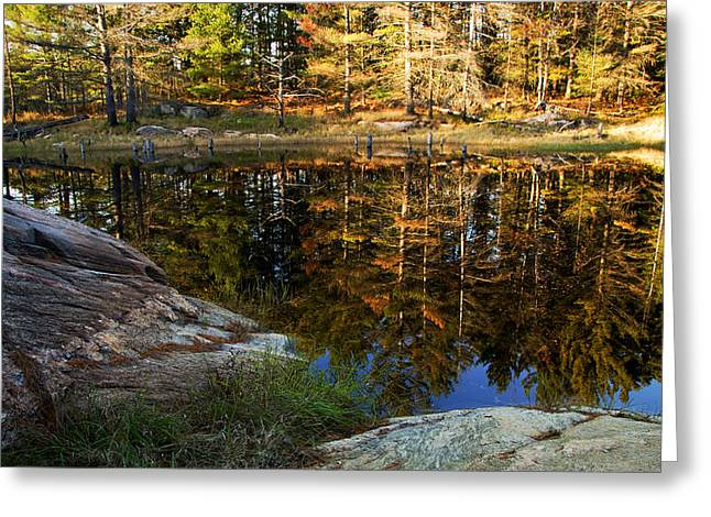 Autumn On Go Home Lake Greeting Card by Carol Hathaway