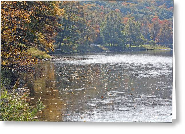 Autumn On The River Greeting Card by Darlene Bell
