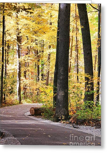 Autumn Path Greeting Card by Jack Schultz