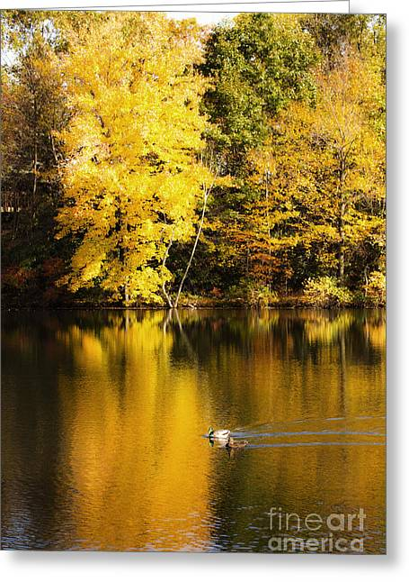 Autumn Pond Greeting Card by Leslie Leda