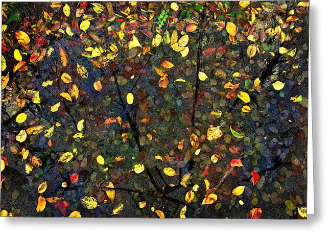 Autumn Reconstructed Greeting Card