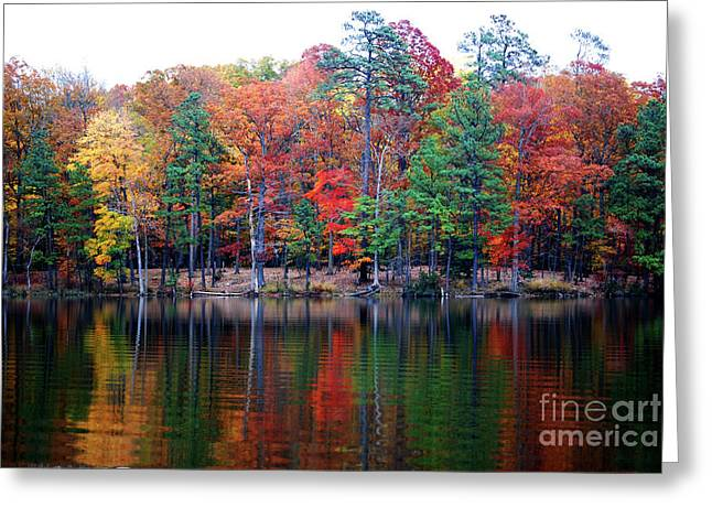 Autumn Reflected  Greeting Card by Linda Mesibov