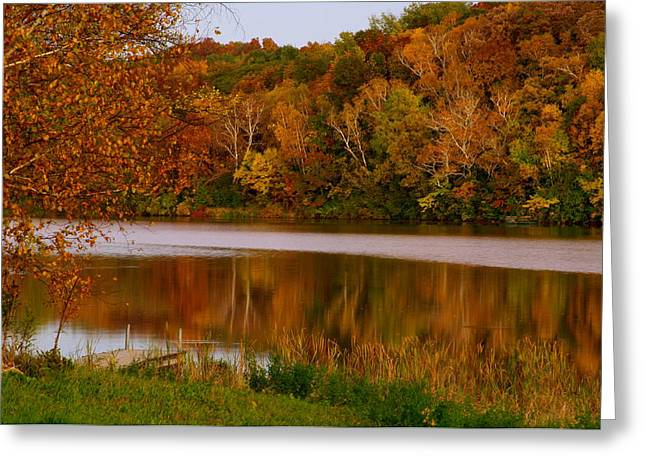Autumn Reflection Greeting Card by Susan Camden