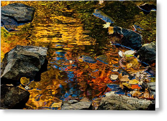 Autumn Reflections Greeting Card by Cheryl Baxter