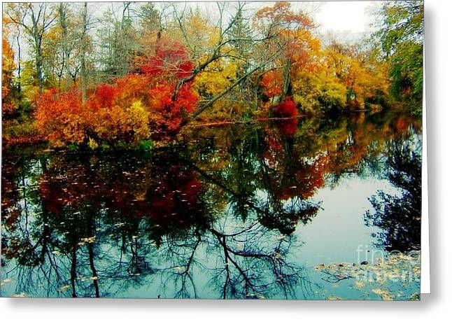Greeting Card featuring the photograph Autumn Reflections by Holly Martinson