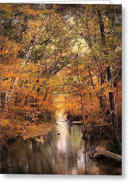 Autumn Riches 2 Greeting Card by Jai Johnson