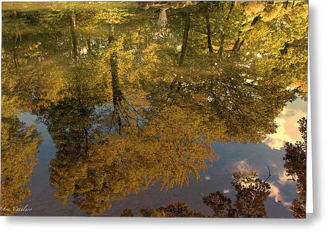 Autumn Sky Reflection Greeting Card by Debra     Vatalaro