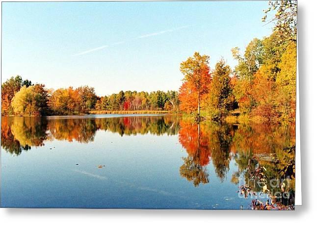 Autumn Splendor Greeting Card by Crissy Sherman
