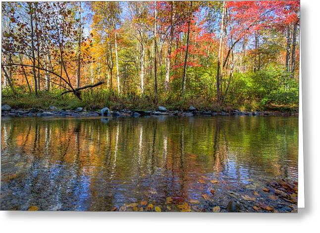Autumn Stream Greeting Card by Debra and Dave Vanderlaan