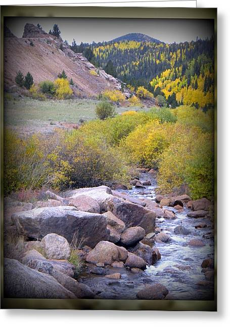 Greeting Card featuring the photograph Autumn Stream by Michelle Frizzell-Thompson