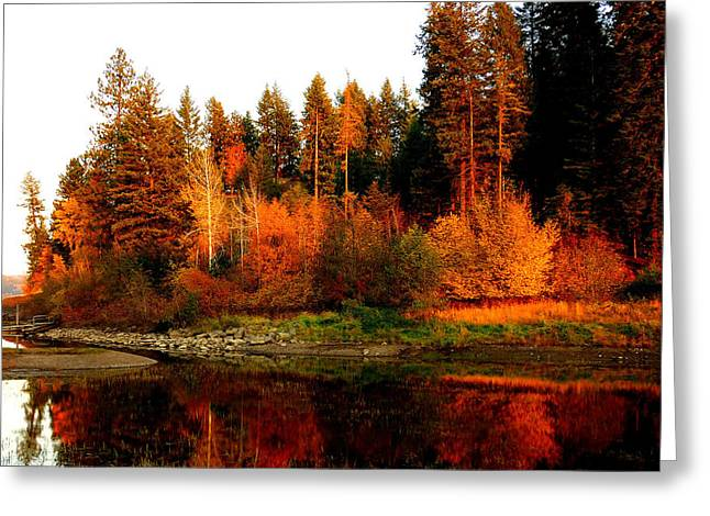 Autumn Sunset At Lake Coeur D'alene Greeting Card by Cindy Wright