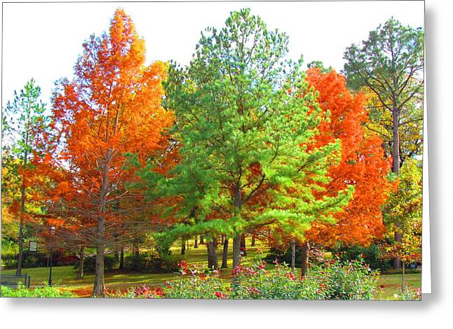 Autumn Trees Greeting Card by Evgeniya Sohn Bearden